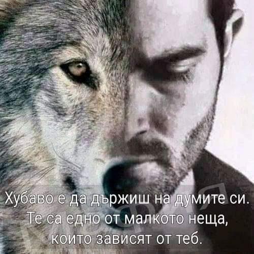 FB_IMG_1581460527135